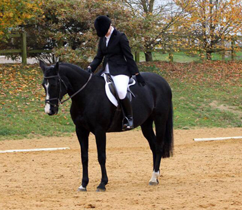 Dressage Times for 23rd March competition
