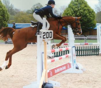 Jumping, Jumpcross, Cross-country