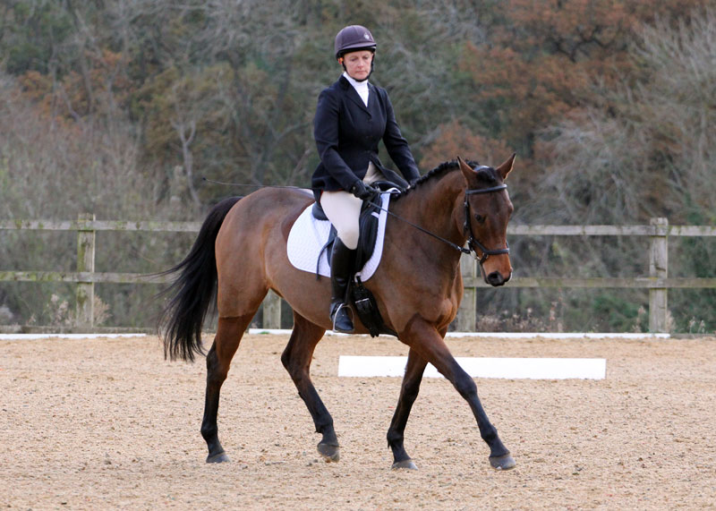 Times for Dressage – 24th Feb