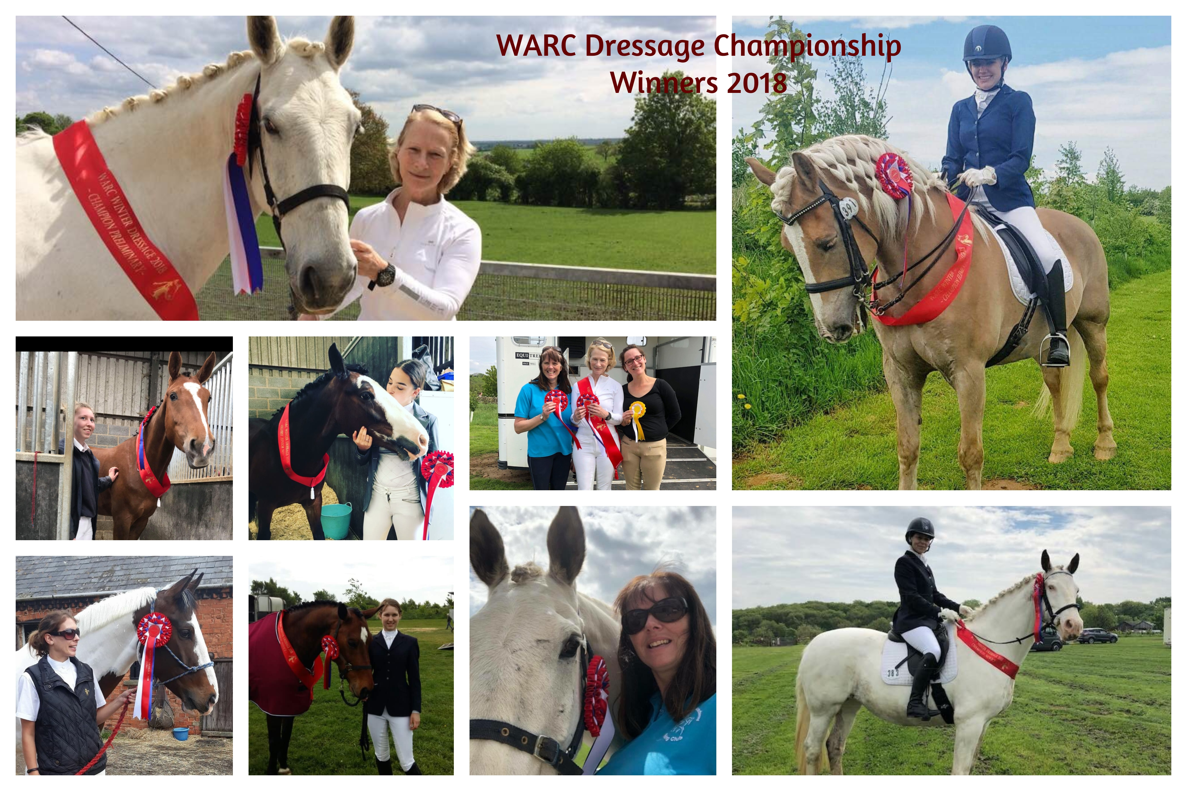 Dressage Championship and Open Show – Times available