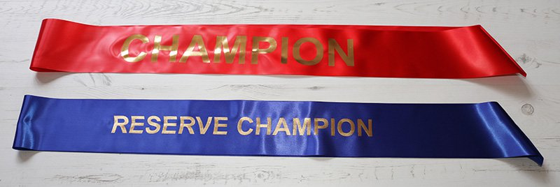Results for Dressage Championships and Open Show – Sun 19th May